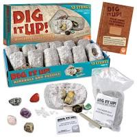 Dig It Up Fossils & Minerals