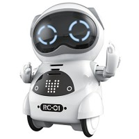 Haite Mini Robot Pocket for Kids with Interactive Dialogue Conversation Voice Recognition Chat Record Singing& Dancing White