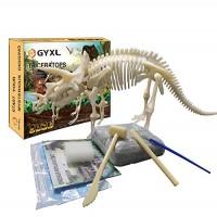 GYxL Dinosaur Fossil dig Toys DIY Dino Kit Kids Science Education Assembly Best Boys and Girls STEM Gift Triceratops