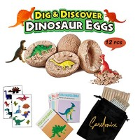SRDx Dig it up Dinosaur Eggs12 Dino Egg ToysBest Science STEM Learning Kids ActivityGift and Party Favors for KidsA Dozen Mystery Excavation Adventure Discovery DIG Eggs