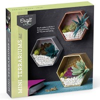 Craft Crush Mini Terrariums Kit Make 3 Geometric with Colorful Felt Succulents