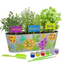 Dan&Darci Paint & Plant Pizza Herb Growing Kit - Grow Basil Oregano Arugula Herbs Garden Includes Everything Needed to and Great STEM Gift for Children