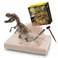 VIBIRIT Dig Up Dinosaurs T-Rex Skeleton Set5PCs Dinosaur Toy Kit Model Toys Gift Educational Realistic for Boys & Girls