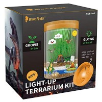 Light-up Dino World Terrarium Kit 6 Dinosaur Toys with Colorful LED on Lid - STEM Educational DIY Science Create Your Own Customized Mini Best Gifts for Boys & Girls Kids Toy