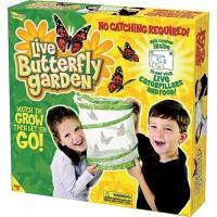 Butterfly Garden Butterfly Habitat