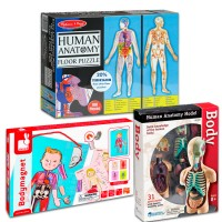 Learning Human Body - Set of 3 Anatomy Toys for 6-8 years - Educational Toys Planet