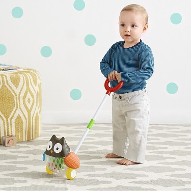 Explore & More Rolling Owl Push Toy for Toddlers